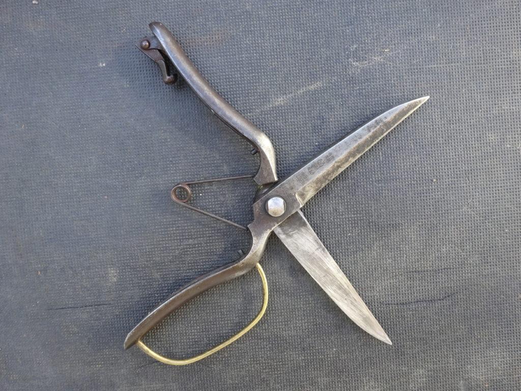 梅の剪定で使う片手刈り込みばさみ