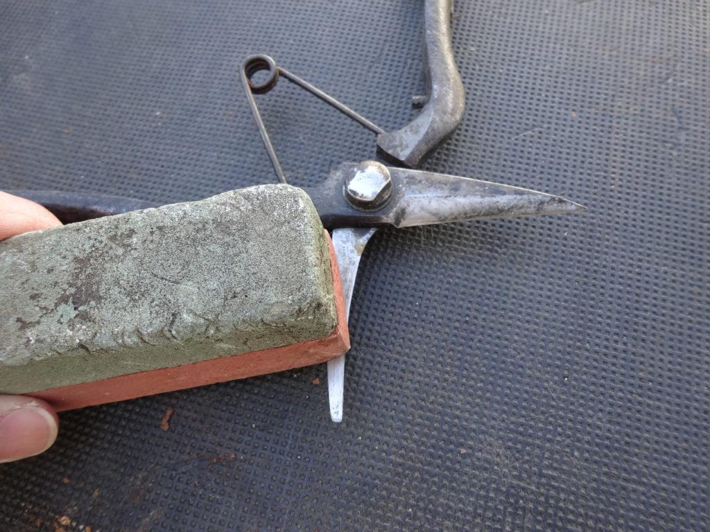 剪定ばさみを研ぐ